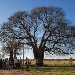 Das ökologische Risiko im Chaco wird immer größer