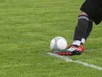 Fußball Bundesliga: Bayern auch bei Wettanbietern wieder Topfavorit