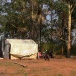 Landbesetzer bedrängen Mennoniten und Brasilianer