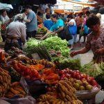 Hohe Pestizidwerte in importiertem Gemüse und Obst registriert