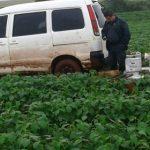 Seltsame Diebstähle von Agrochemikalien