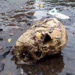 Unwetter legt Skelettteile frei