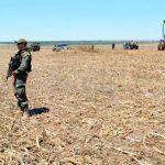 Bewaffnete Soldaten bewachen gläubige Mennoniten