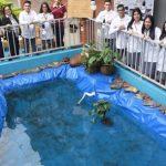 Tilapia Zuchtstation in Gutenberg Schule installiert
