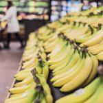 Verseuchte Bananen