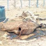 Notstand im unteren und zentralen Chaco ausgerufen
