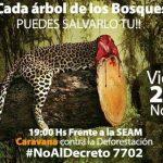 Für den Jaguar und gegen die Abholzung