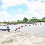 Abgetrennter Kopf im Paraguay Fluss gefunden