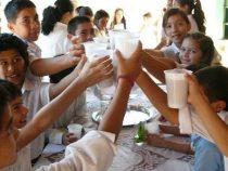 Schulessen generiert den Milchproduzenten rund 20 Millionen USD