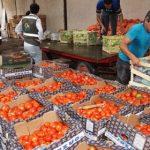 Billiger wird nichts in Paraguay