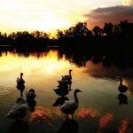Die schönsten Sonnenuntergänge in Paraguay