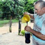 Zuckerrohr-Melasse im Aufwärtstrend