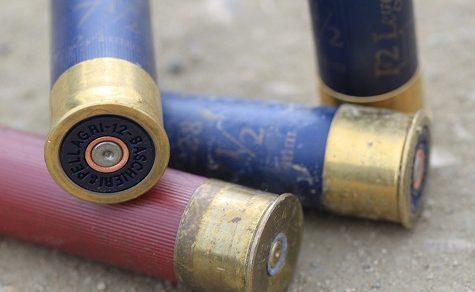 5-Jähriger stirbt durch Schuss aus Schrotgewehr