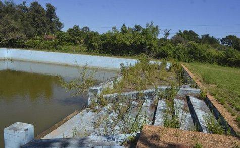 Städtisches Schwimmbad als Brutplatz für Mücken