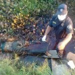 Vermisste 17-Jährige tot aufgefunden