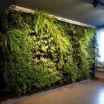 Der Boom des vertikalen Gartengeschäfts