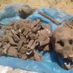 Schädel und Knochenreste gefunden