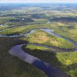 Das paraguayische Pantanal