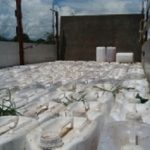 Pflanzenschutzmittel im Chaco sichergestellt