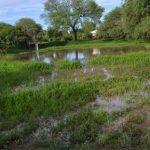 Hochwasser in der Kolonie Fernheim