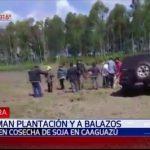 Schießerei zwischen Sojabauern und Campesinos