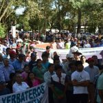 Yerba-Mate Landwirte wollen Fernstraßen sperren