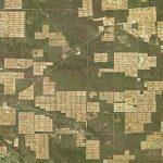 Chaco: NASA weist auf Abholzung hin