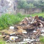 Seam schließt Mülldeponien von Iturbe, Independencia und Paso Yobai