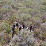Paraguay: Die Suche nach der Nadel im Heuhaufen