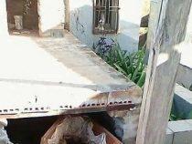 Zwei Totenschädel von Friedhof gestohlen