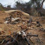 Chaco: Bolivianisches Flugzeug aus Kriegszeiten gefunden