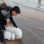 Fische im Ypacaraí See ausgesetzt