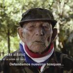 """Kampagne: """"Zweiter Krieg im Chaco"""""""