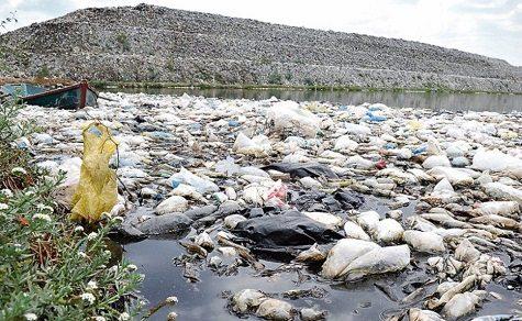 """Weltumwelttag: """"Keine Kontamination durch Plastik"""""""