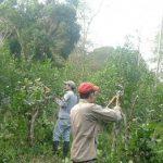 Campesinos drohen in ein Waldreservat einzudringen