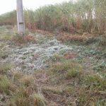 In einigen Gebieten gab es Frost