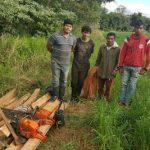 Mennonit zeigt angeblich illegale Abholzung an
