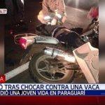 Motorradfahrer stirbt nach Zusammenstoß mit Rind