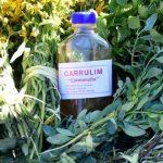 Zuckerrohrschnaps, die Blume des Augusts und Limone