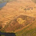 Jeden Tag verschwinden 750 Hektar Wald im Gran Chaco