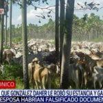 """Daher: Zehntausende von Hektar im Chaco """"enteignet"""""""