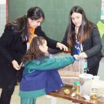 Klimawandel erreicht Bildungssektor