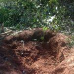 Kolonist entdeckt drei Totenschädel im Garten