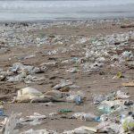 Ein großes Übel: Plastik in Gewässern