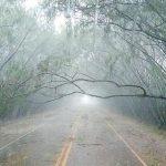 Unwetter hinterlässt eine Schneise der Verwüstung in Alto Paraná