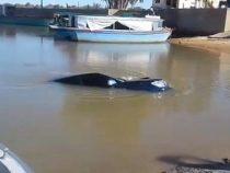 Angler versenkt Auto im Fluss
