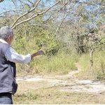 Ranger im Botanischen Garten: Nur Macheten und keine Waffen zur Hand