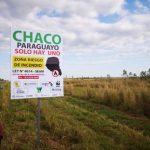 Wildtiere haben Vorrang beim Straßenbau im Chaco