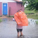 Waldrodungen wirken sich auf das Hochwasser aus