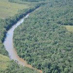 Leichenfund am Fluss Ypané